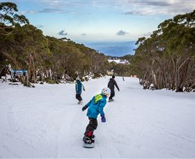 Mt Baw Baw Alpine Resort - SA Accommodation