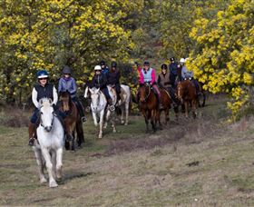 Burnelee Excursions on Horseback - SA Accommodation
