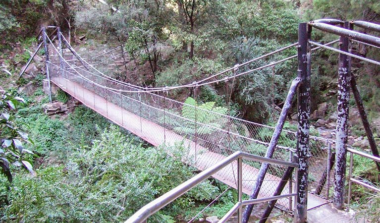 Jenolan River walking track - SA Accommodation