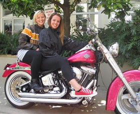 Wild Ride Harley and Motorcycle Tours - SA Accommodation