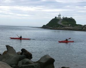 Newcastle Kayak Tours - SA Accommodation