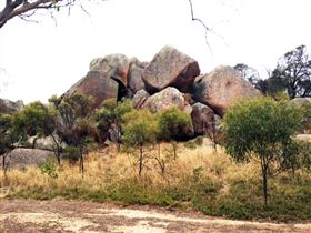 Mount Boothby Conservation Park