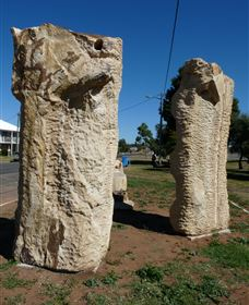 Fossilised Forrest Sculptures - SA Accommodation