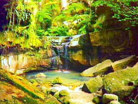 Carnarvon Gorge Carnarvon National Park - SA Accommodation