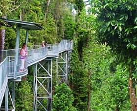 Mamu Tropical Skywalk - SA Accommodation