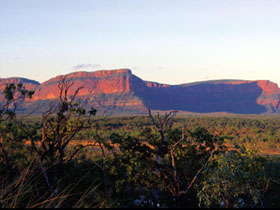 Blackdown Tableland National Park - SA Accommodation