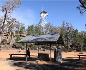 Pilliga Forest Lookout Tower - SA Accommodation