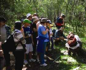 Warrumbungle National Park Discovery Program - SA Accommodation