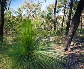 Brisbane Ranges National Park - SA Accommodation