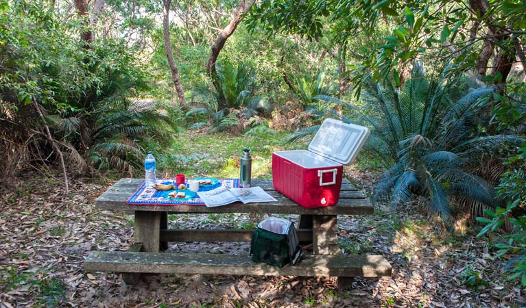 Little Llangothlin picnic area - SA Accommodation