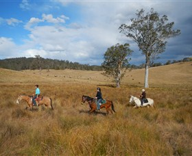 Chapman Valley Horse Riding - SA Accommodation