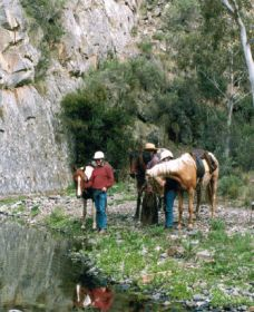 Yarramba Horse Riding - SA Accommodation