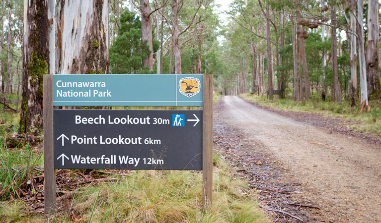 Beech lookout - SA Accommodation