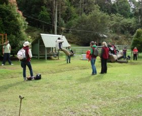 Forest of Tranquillity - Australian Rainforest Sanctuary - SA Accommodation