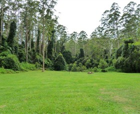 Kerewong State Forest - SA Accommodation