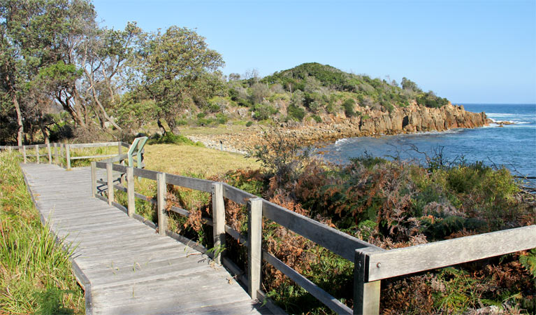 Mimosa Rocks walking track - SA Accommodation