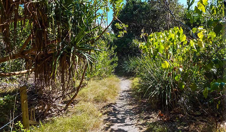 North Head walking track - SA Accommodation