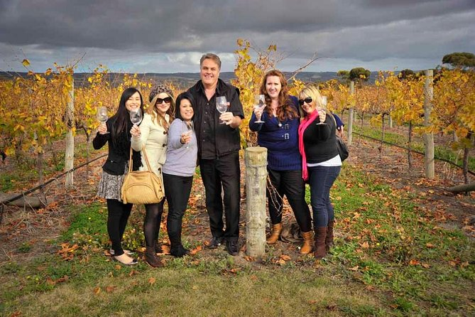 McLaren Vale Winery Small Group Tour from Adelaide Wine Tasting and Lunch - SA Accommodation