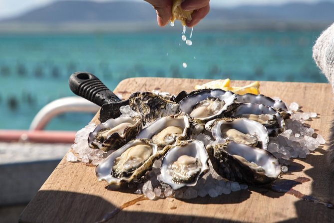 Pure Coffin Bay Oysters - Short and Sweet Oyster Farm Tour - SA Accommodation