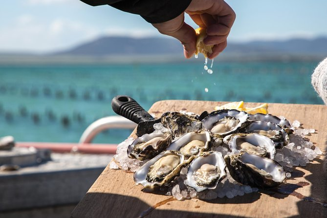 Pure Coffin Bay Oysters - Oyster Farm and Bay Tour - SA Accommodation