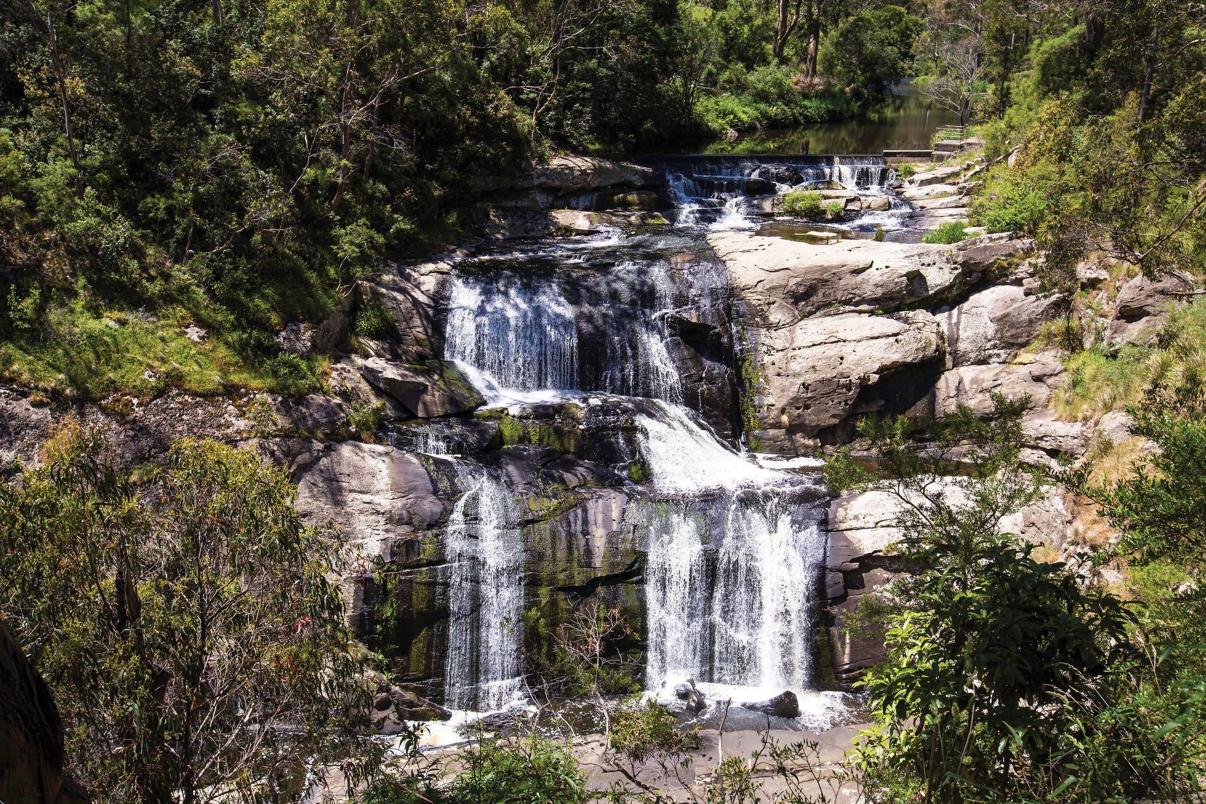 Agnes Falls Scenic Reserve - SA Accommodation