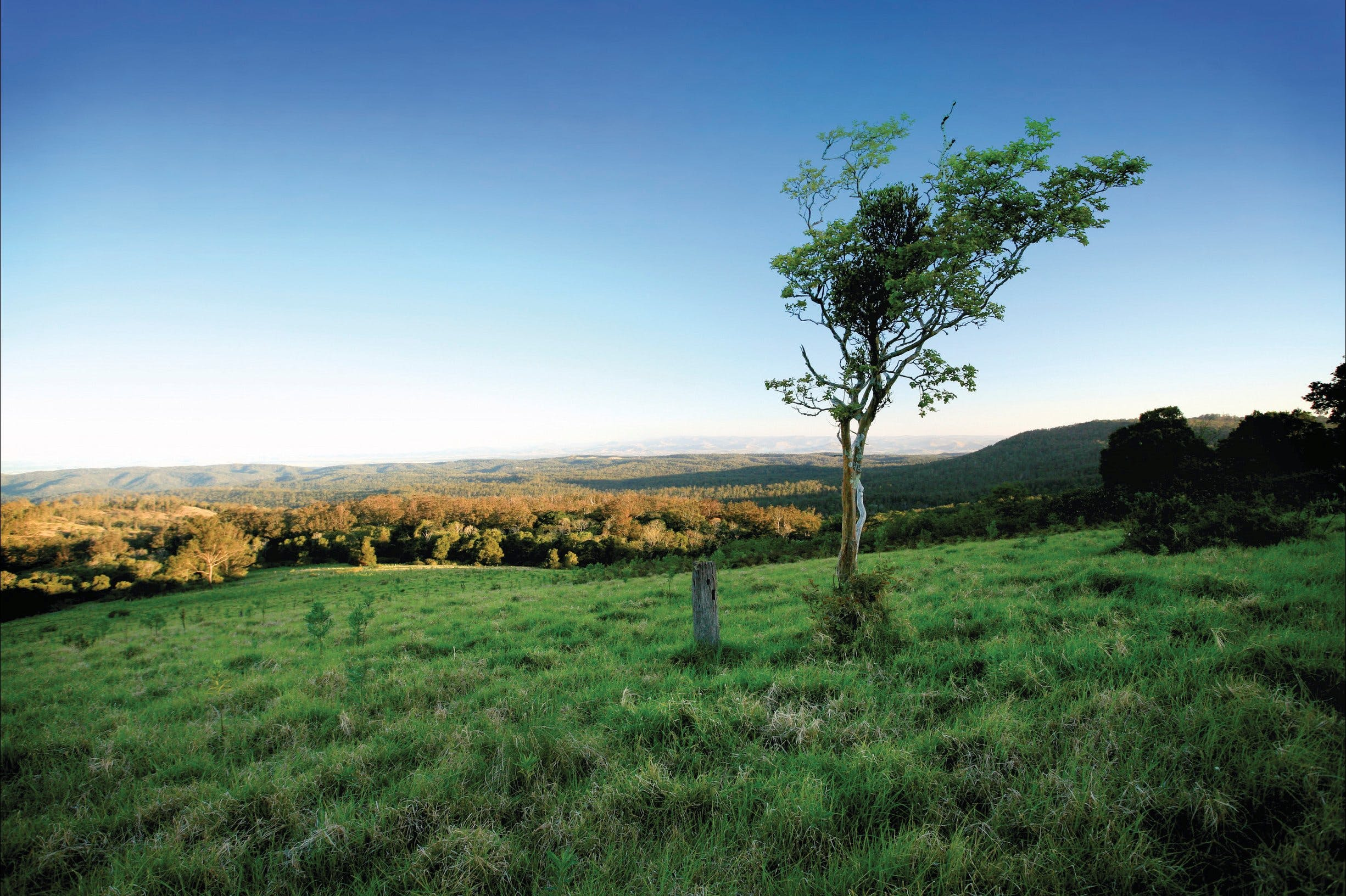 Ravensbourne National Park - SA Accommodation