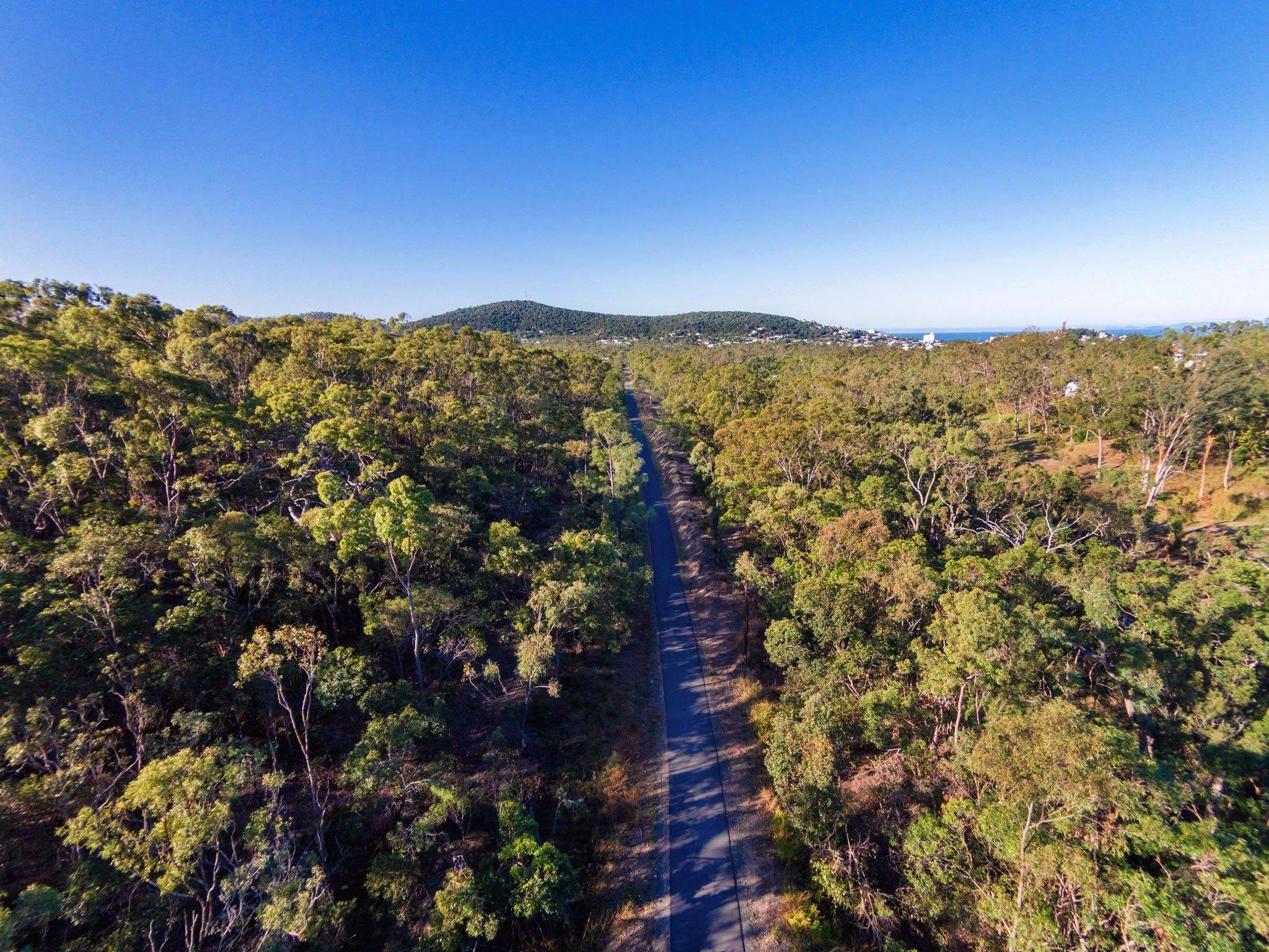 Capricorn Coast Pineapple Rail Trail - SA Accommodation