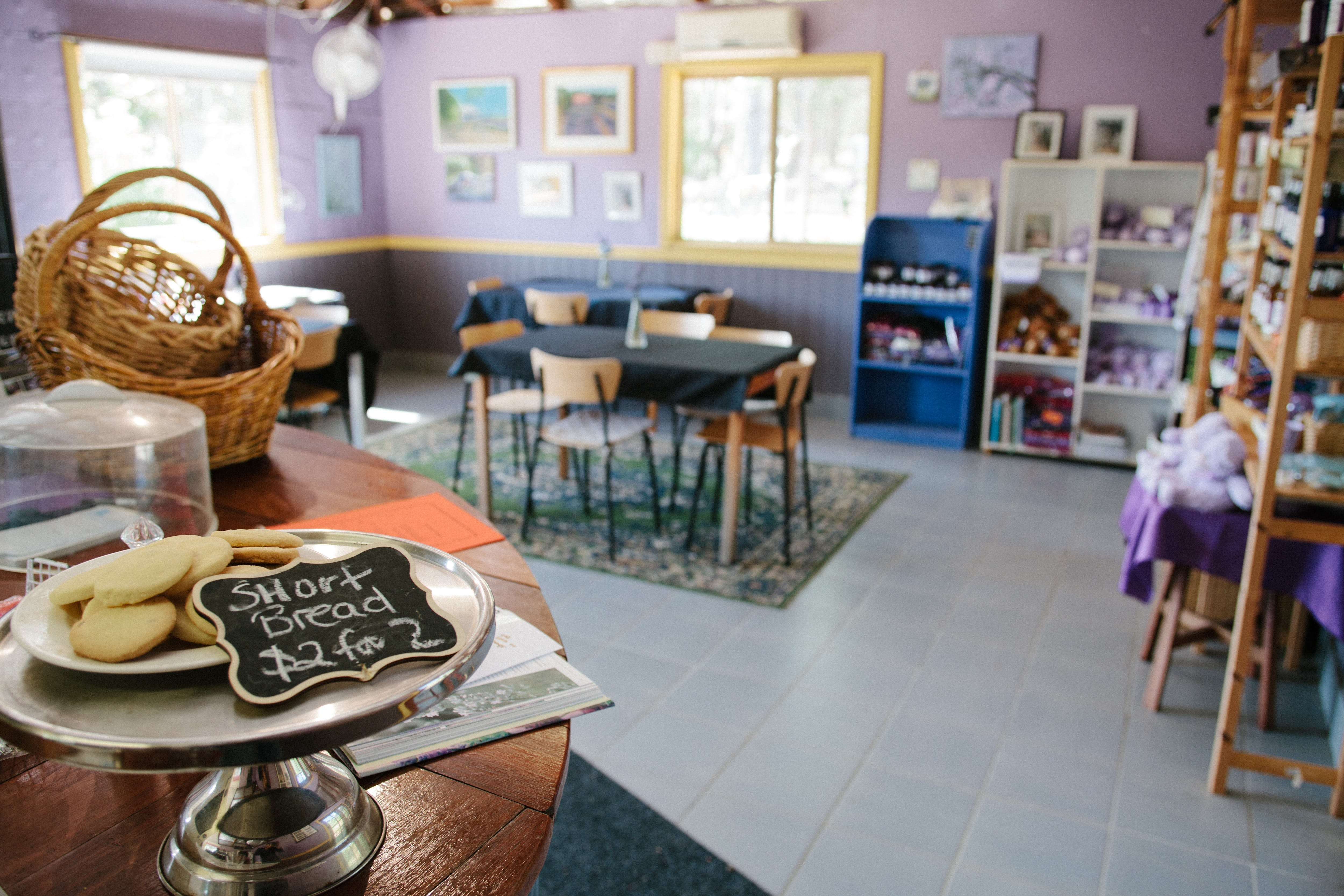Nannup Lavender Farm - SA Accommodation