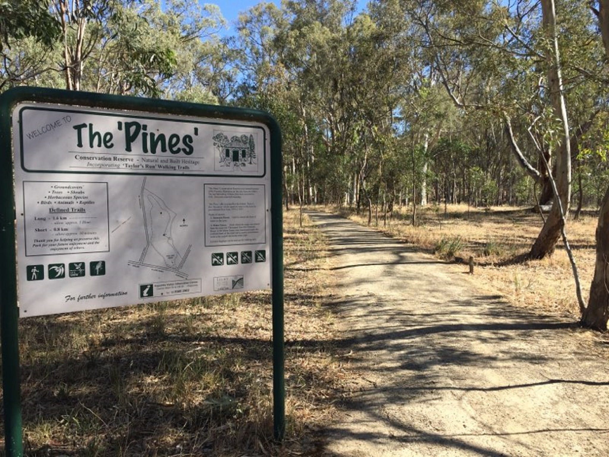 The Pines Conservation Reserve - SA Accommodation