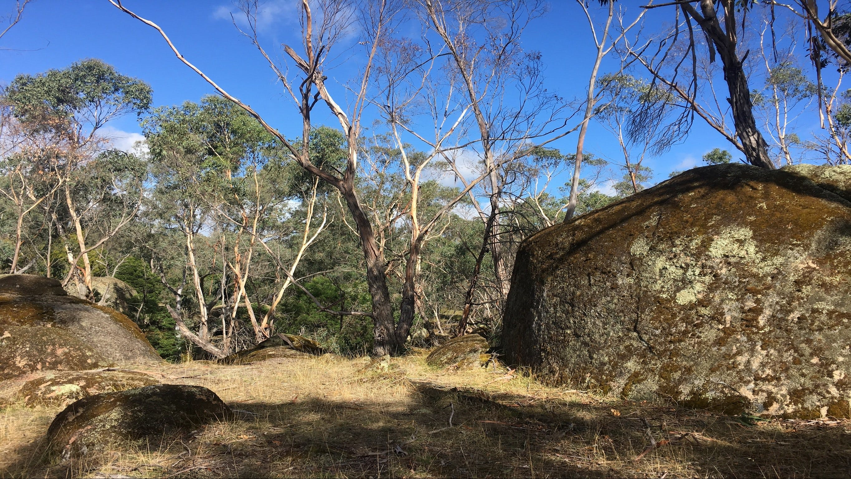Bailey's Rocks - Dergholm State Park - SA Accommodation