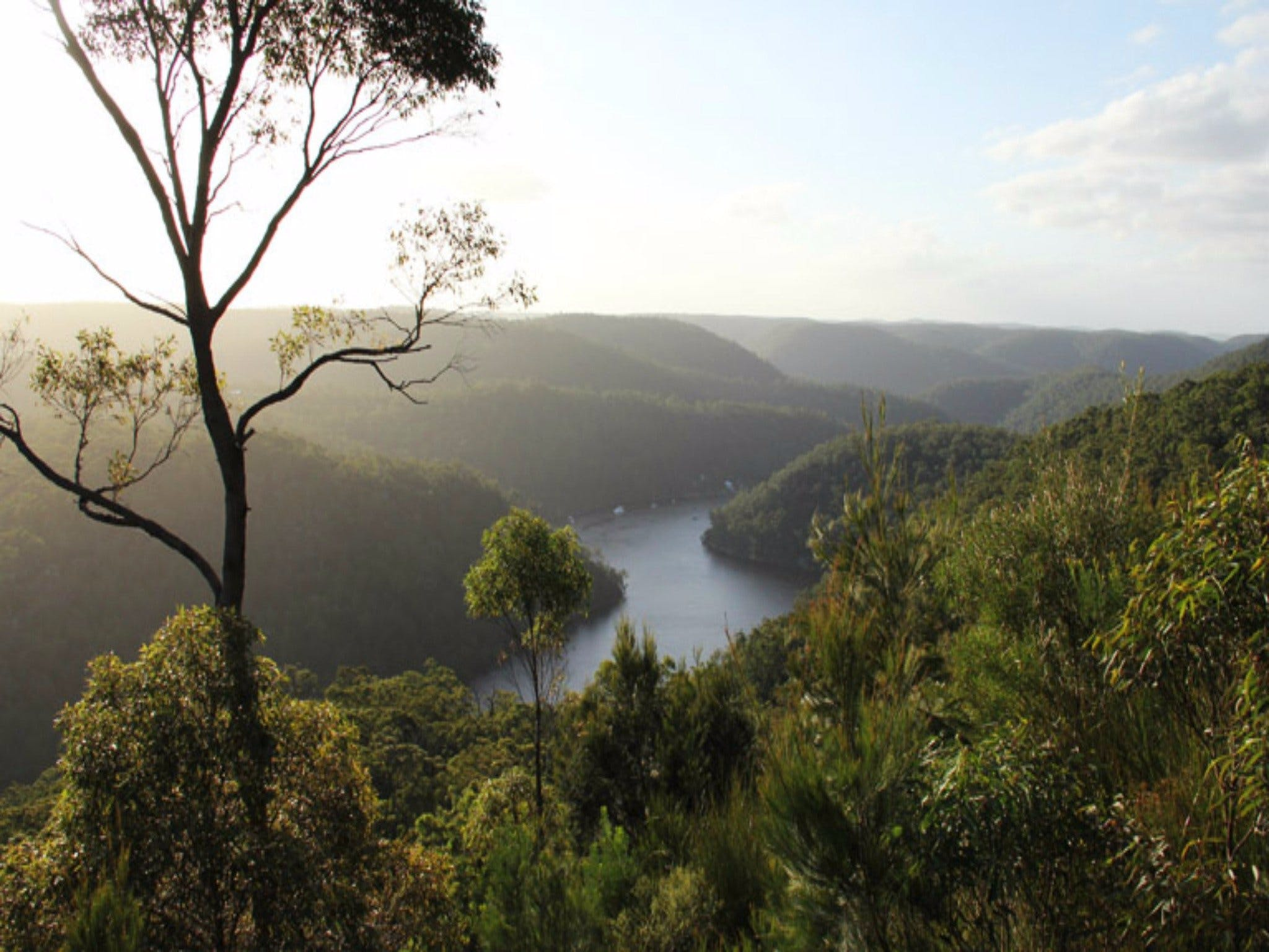 Berowra Valley National Park - SA Accommodation