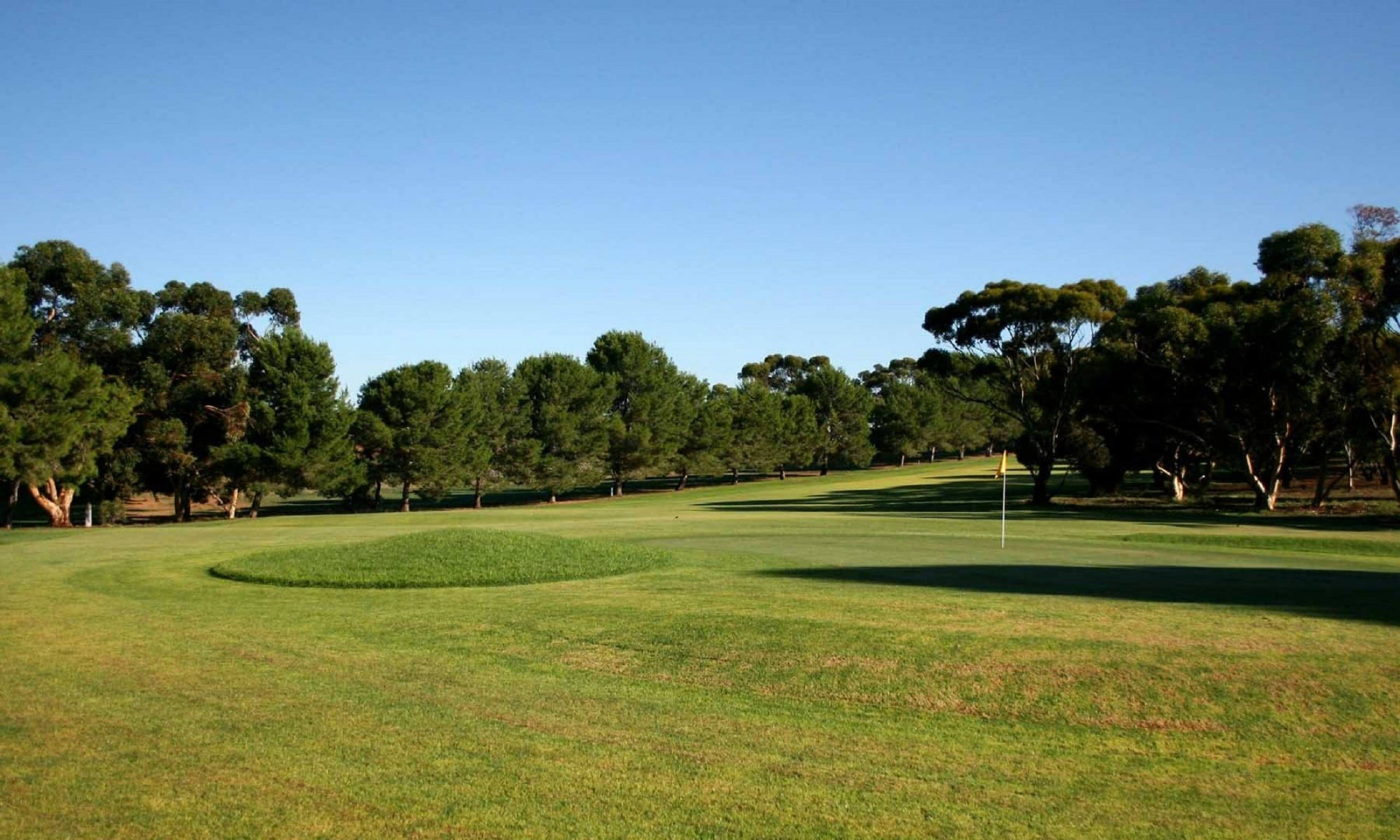 Mannum Golf Club - SA Accommodation