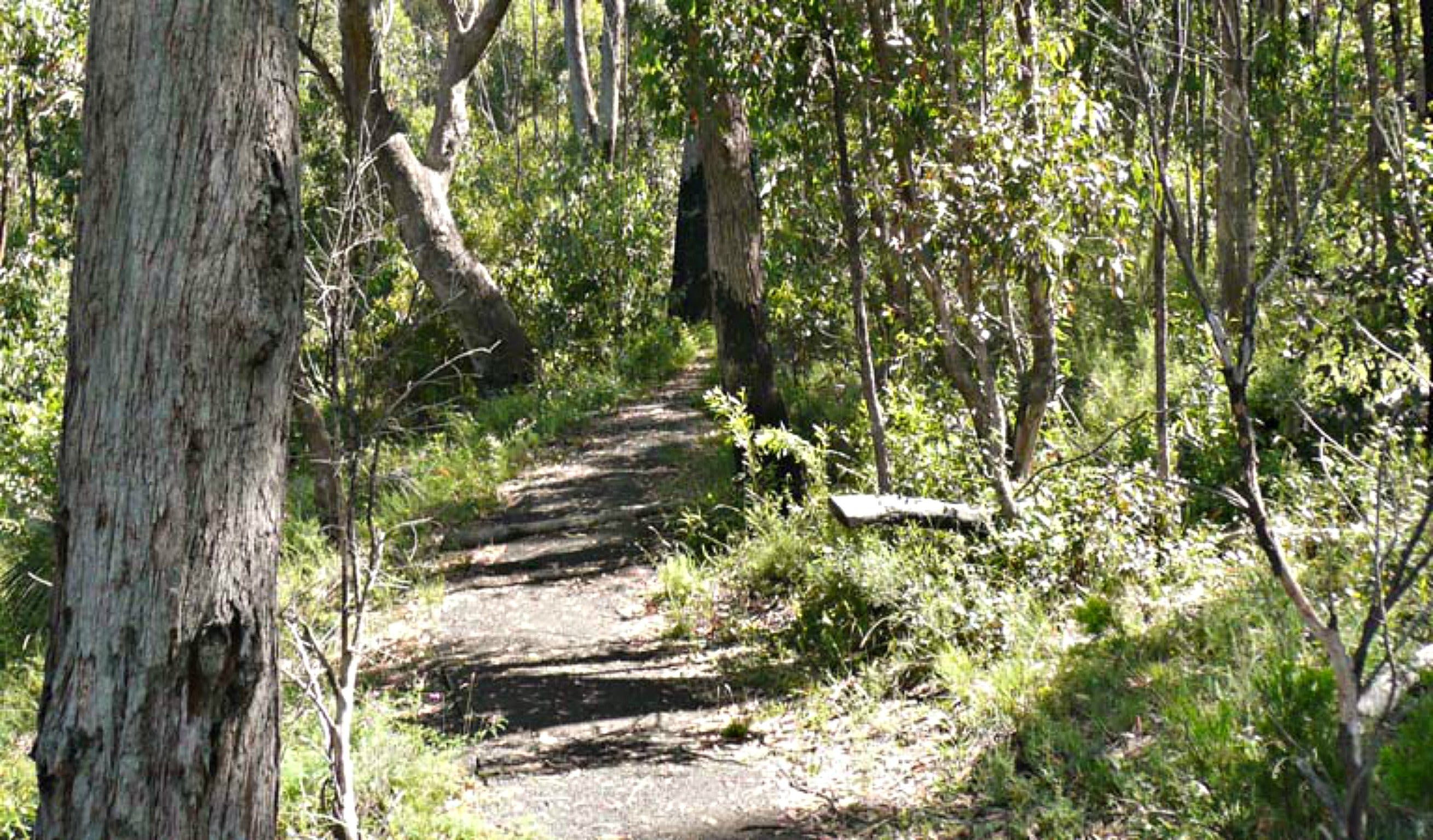 Euglah Rock Walking Track - SA Accommodation