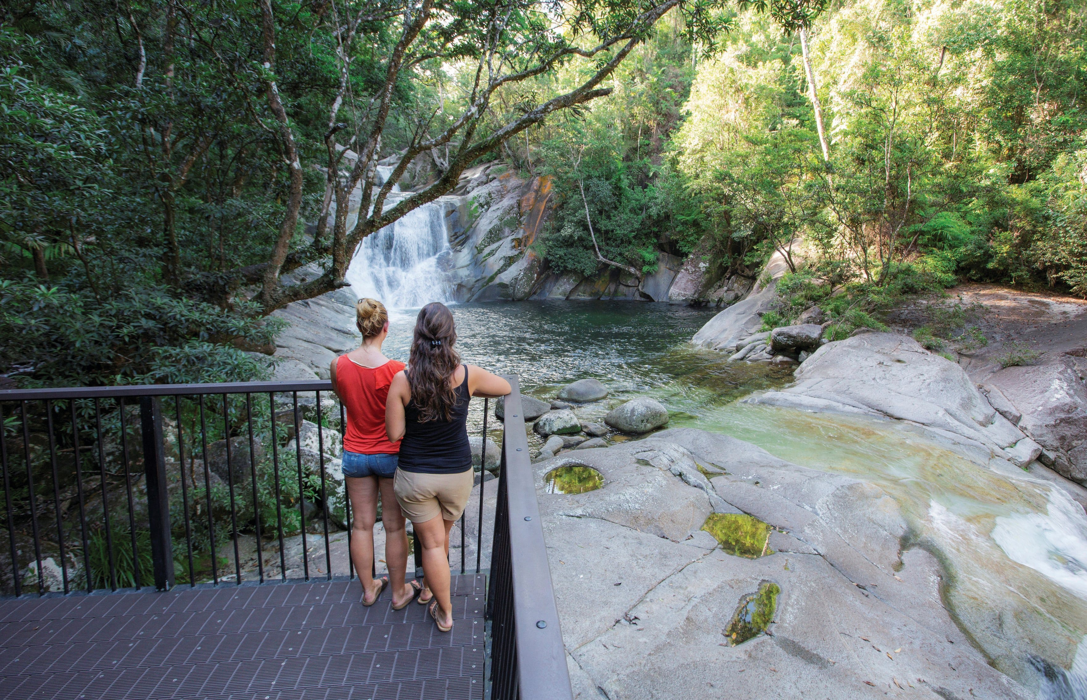 Josephine Falls walking track Wooroonooran National Park - SA Accommodation