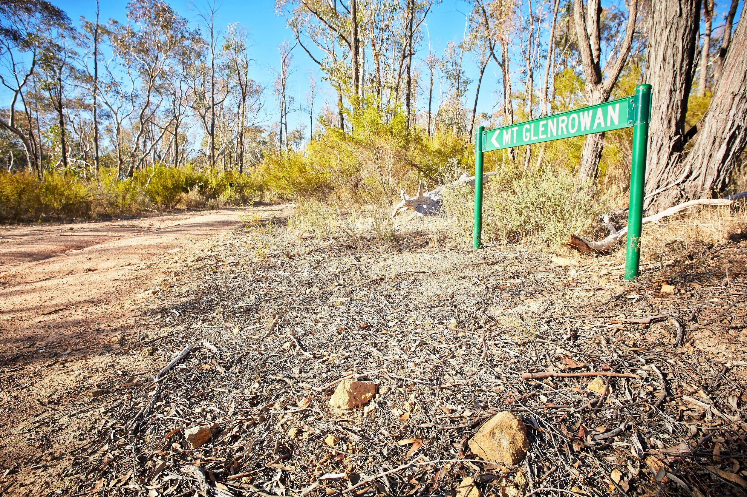 Mt Glenrowan Lookout Walk - SA Accommodation
