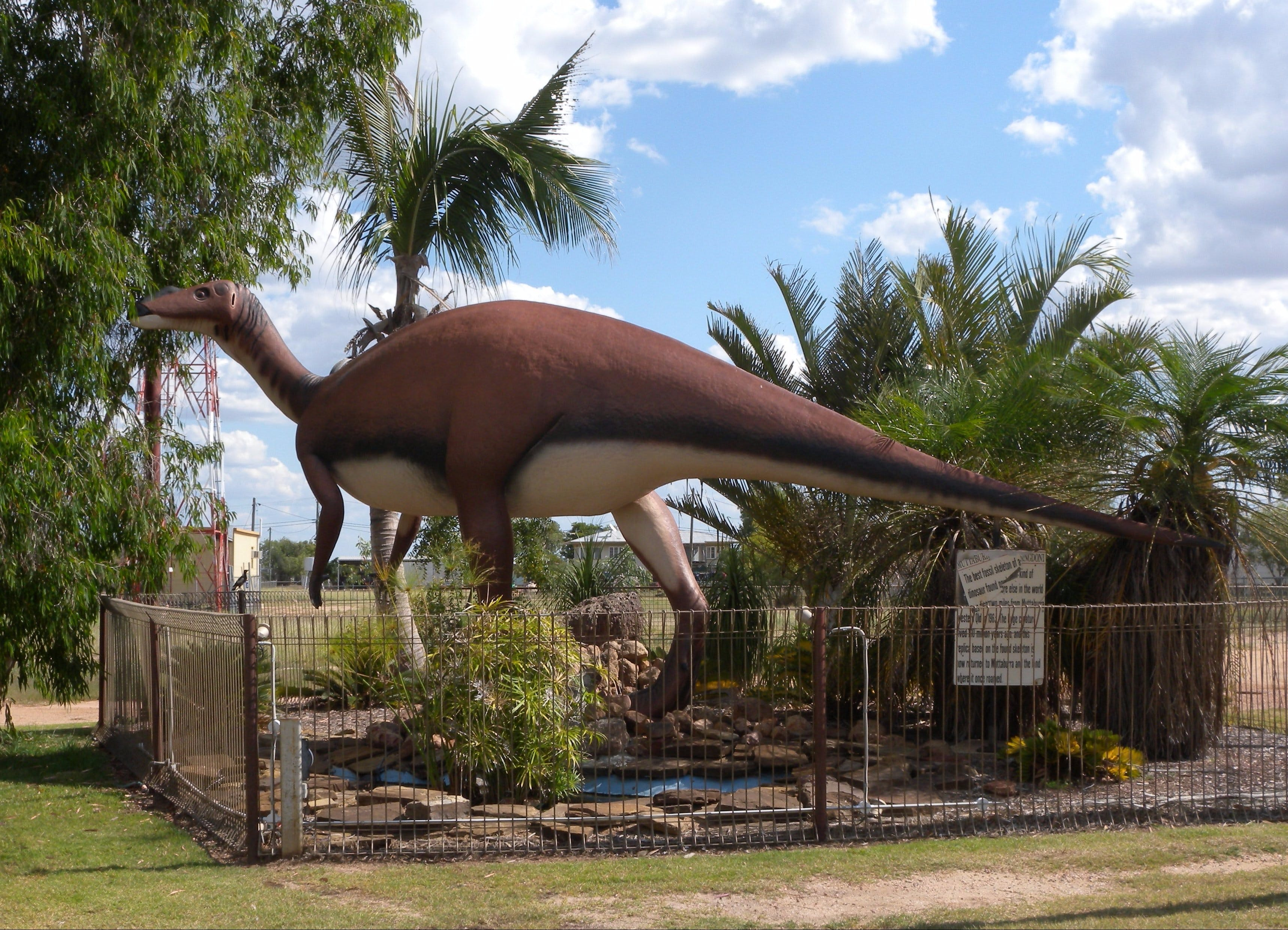 Muttaburrasaurus Langdoni Replica - SA Accommodation