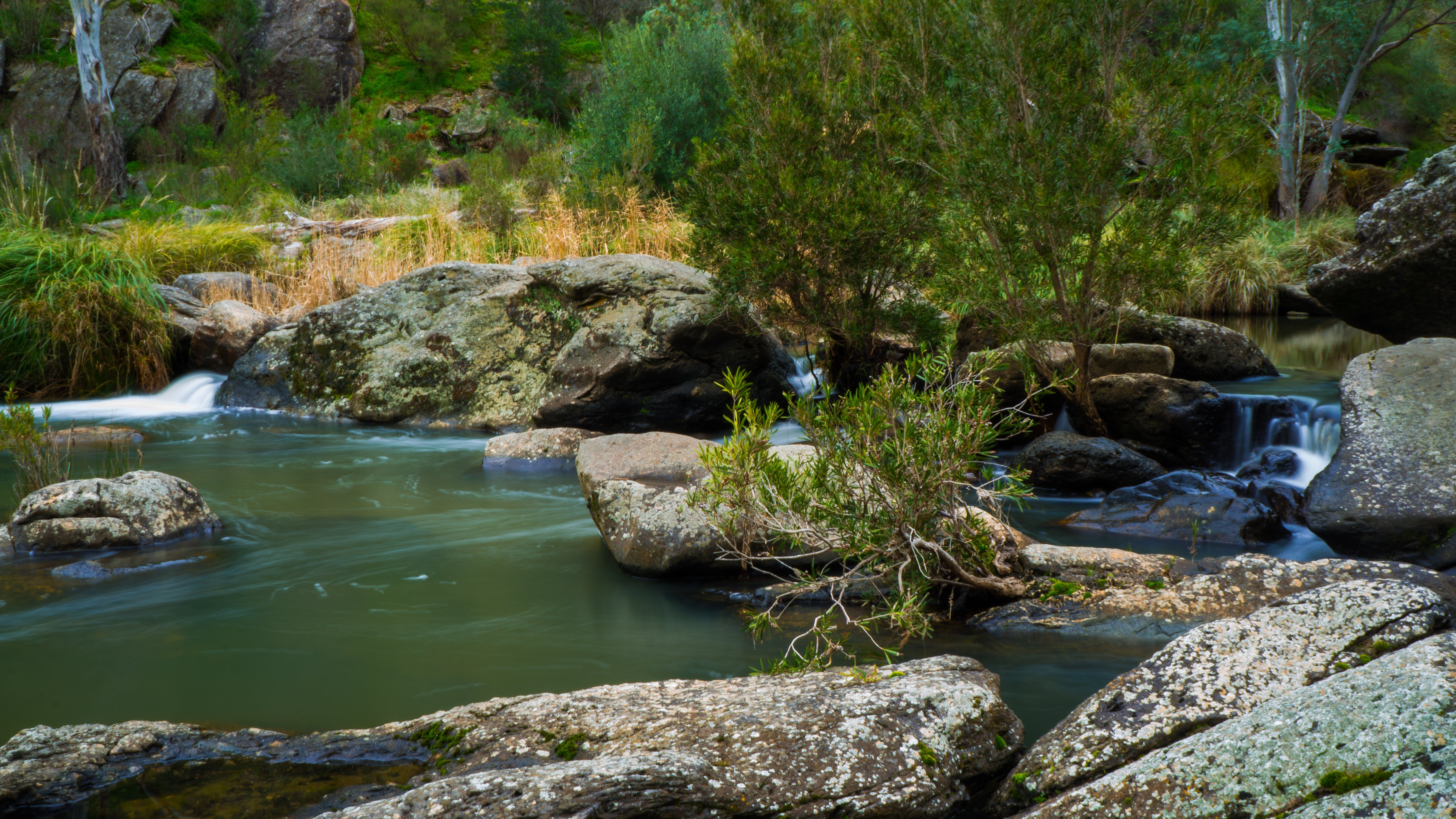Onkaparinga River National Park - SA Accommodation