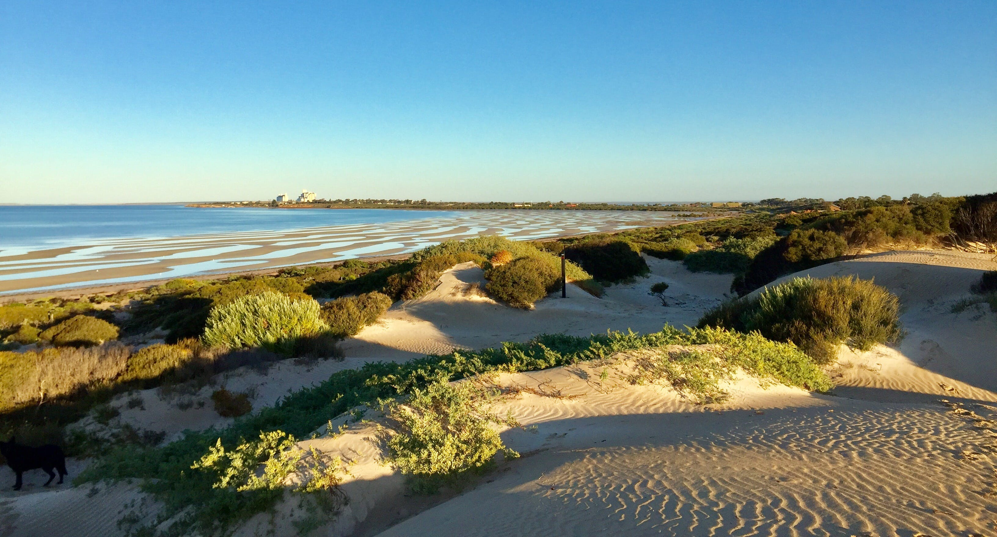 Shelly Beach Dune Walk Trail - SA Accommodation