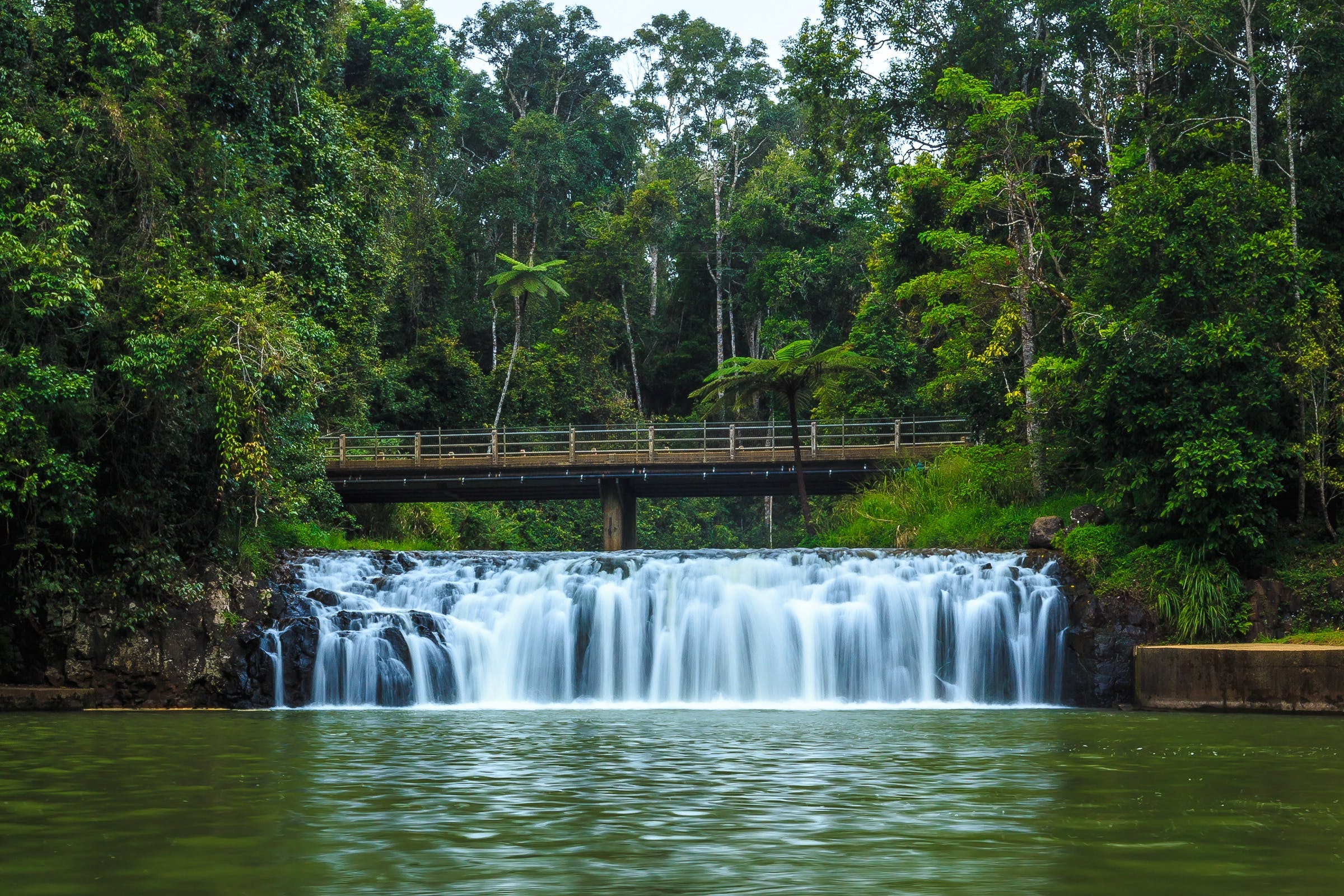 Malanda Falls - SA Accommodation