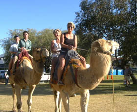 Calamunnda Camel Farm - SA Accommodation