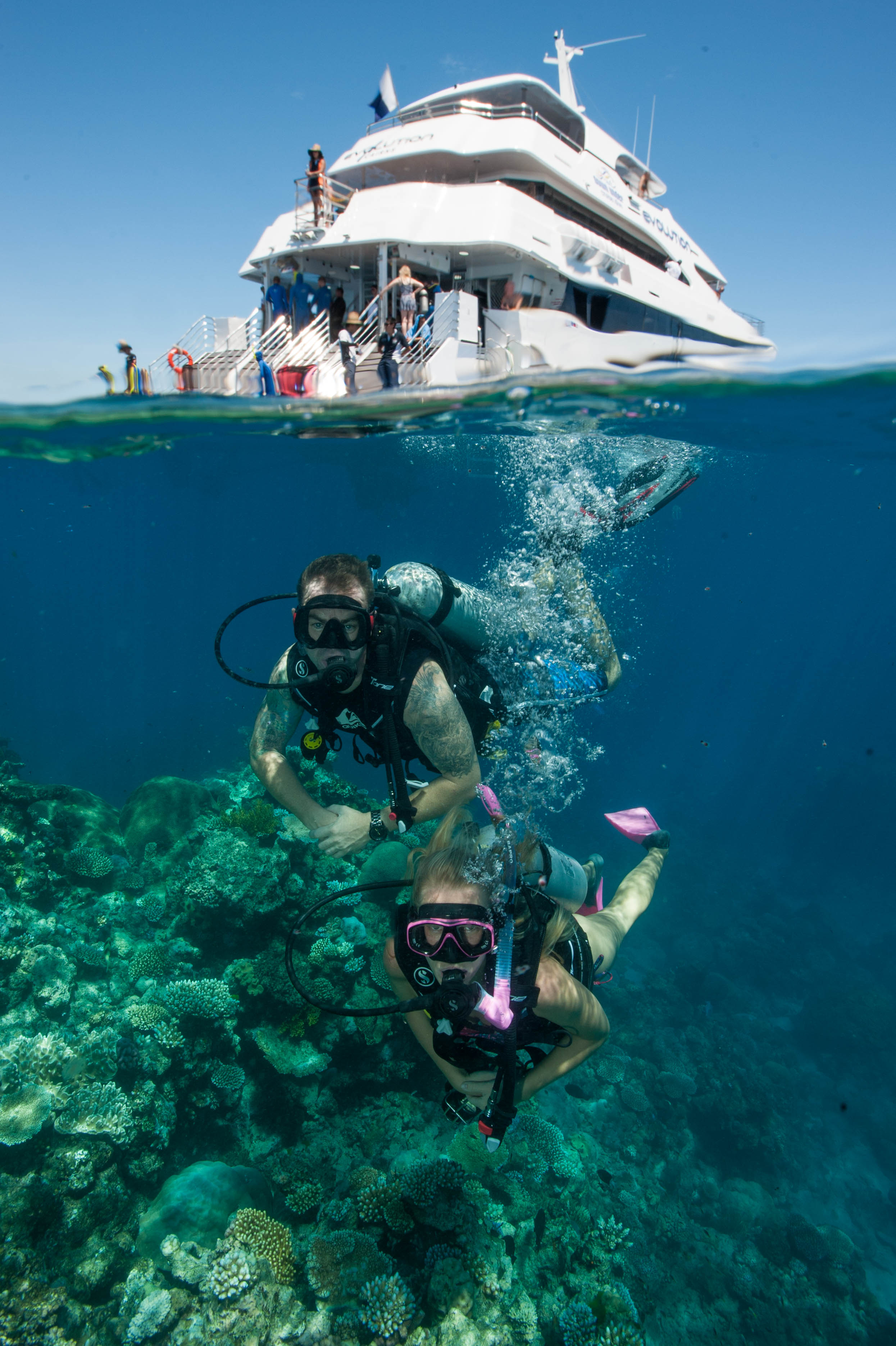 Down Under Cruise and Dive - SA Accommodation