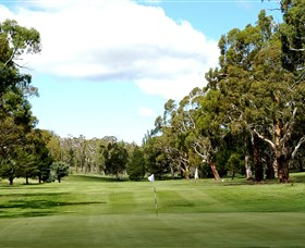 Cooma Golf Club - SA Accommodation
