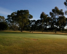 Winchelsea Golf Club - SA Accommodation