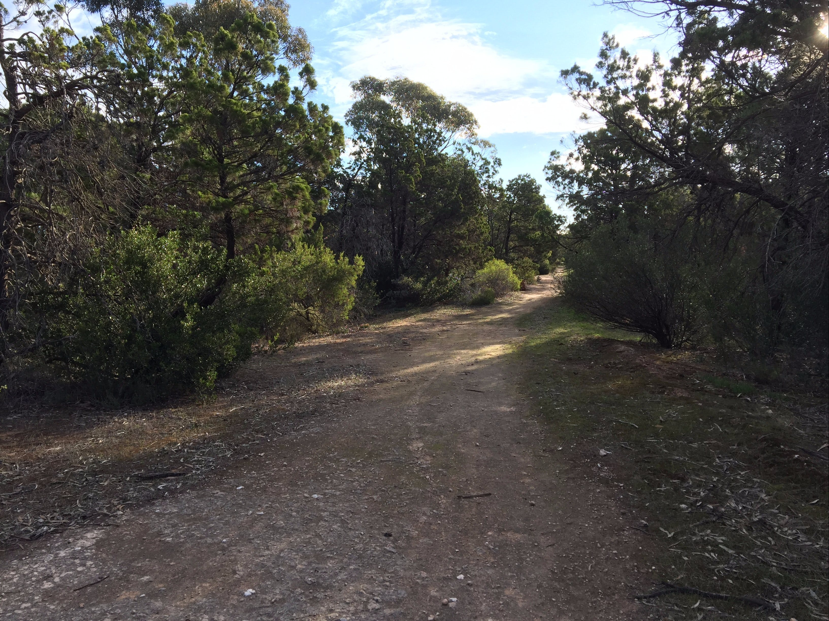 Victoria Park Moonta monthly walks - SA Accommodation