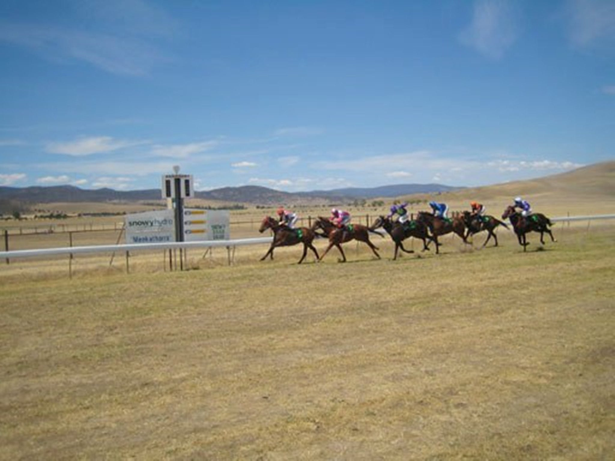 Adaminaby Cup Race Day - SA Accommodation