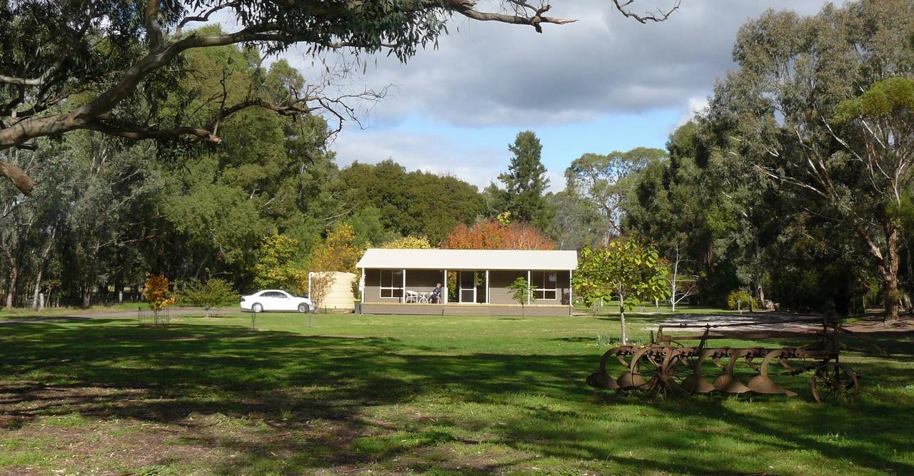 Camawald Coonawarra Cottage BB - SA Accommodation